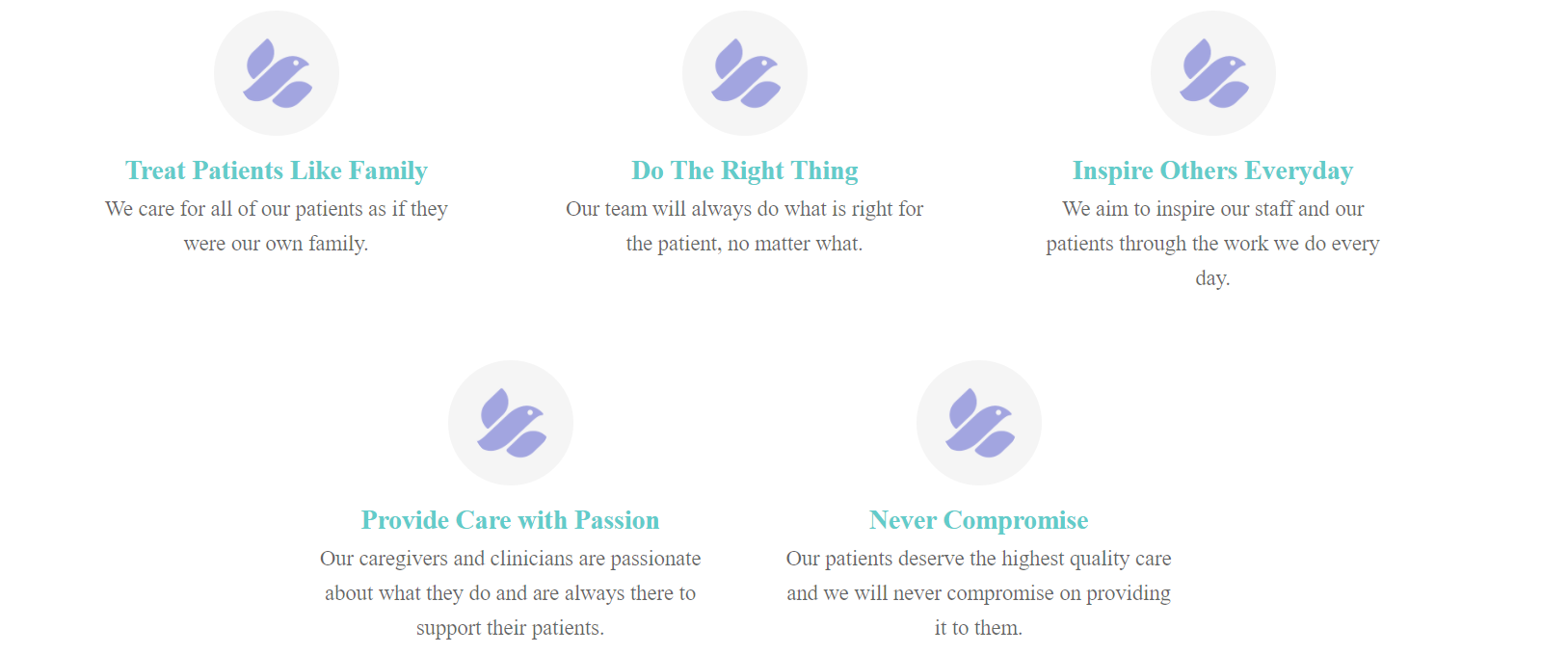 benefits of companion care